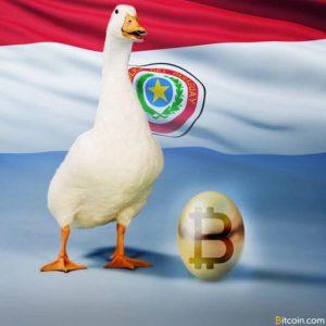 Paraguay-Obsidiam-5