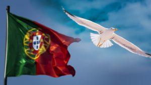 Portugal-Obsidiam-5