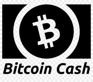 obsidiam.com-178-1786481_832-x-664-19-bitcoin-cash-logo-white